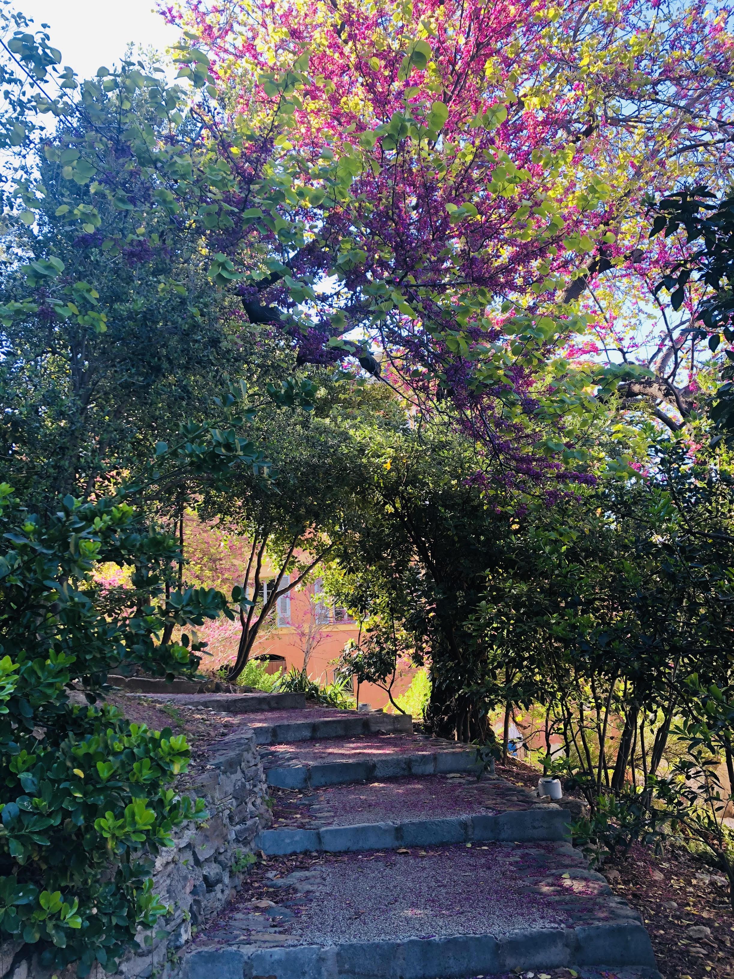 La photo du jour : un kaléidoscope de couleurs au jardin Romieu