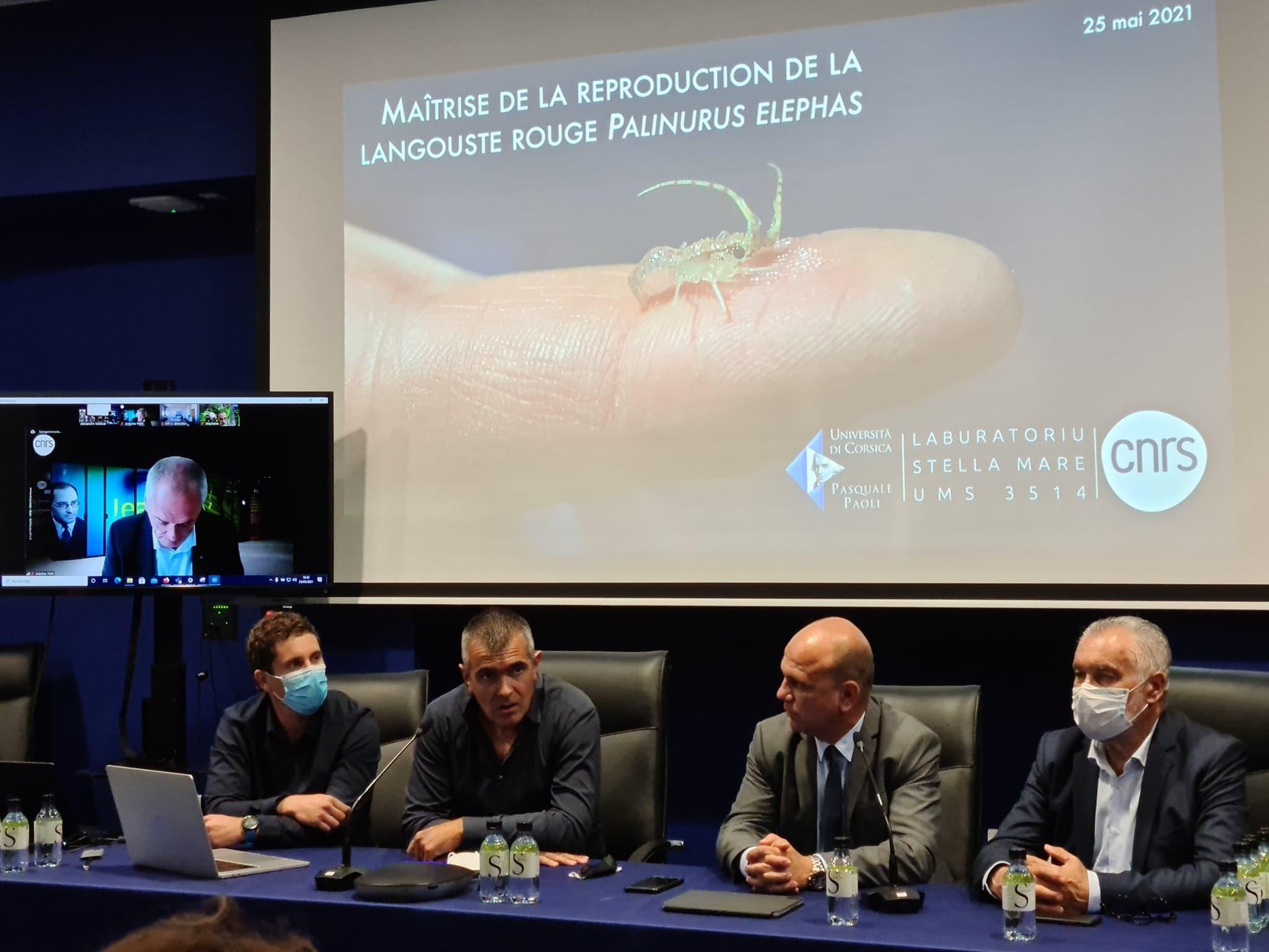 Antoine Petit, le président du CNRS est venu saluer l'avancée scientifique en visio. Crédits Photo : Pierre-Manuel Pescetti