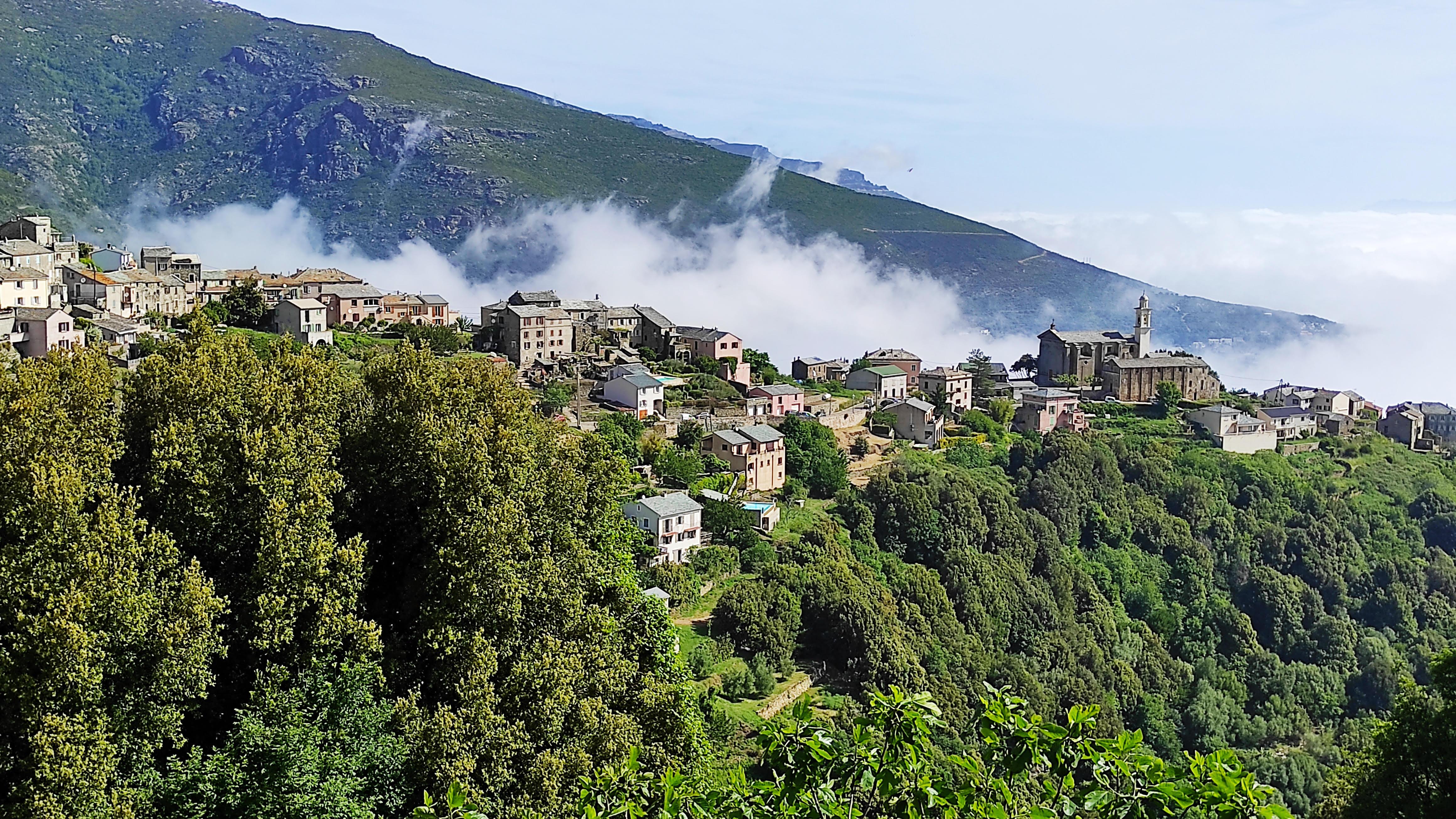 San Martinu di Lota (Photo Mathieu Mariotti)