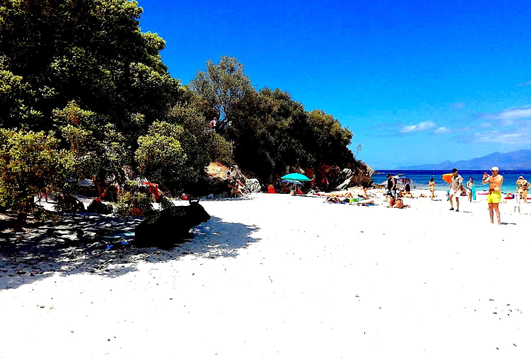La photo du jour : surveillant de baignade sur la plage du Lotu