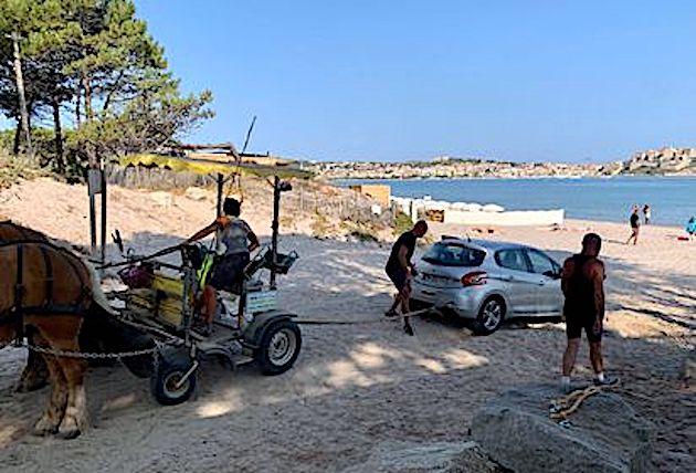 La scène s'est déroulée ce dimanche matin sur la plage de Calvi