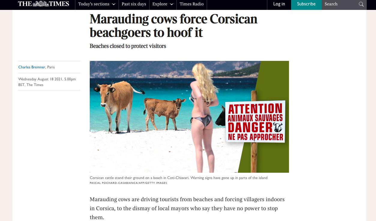 Capture écran article The Times