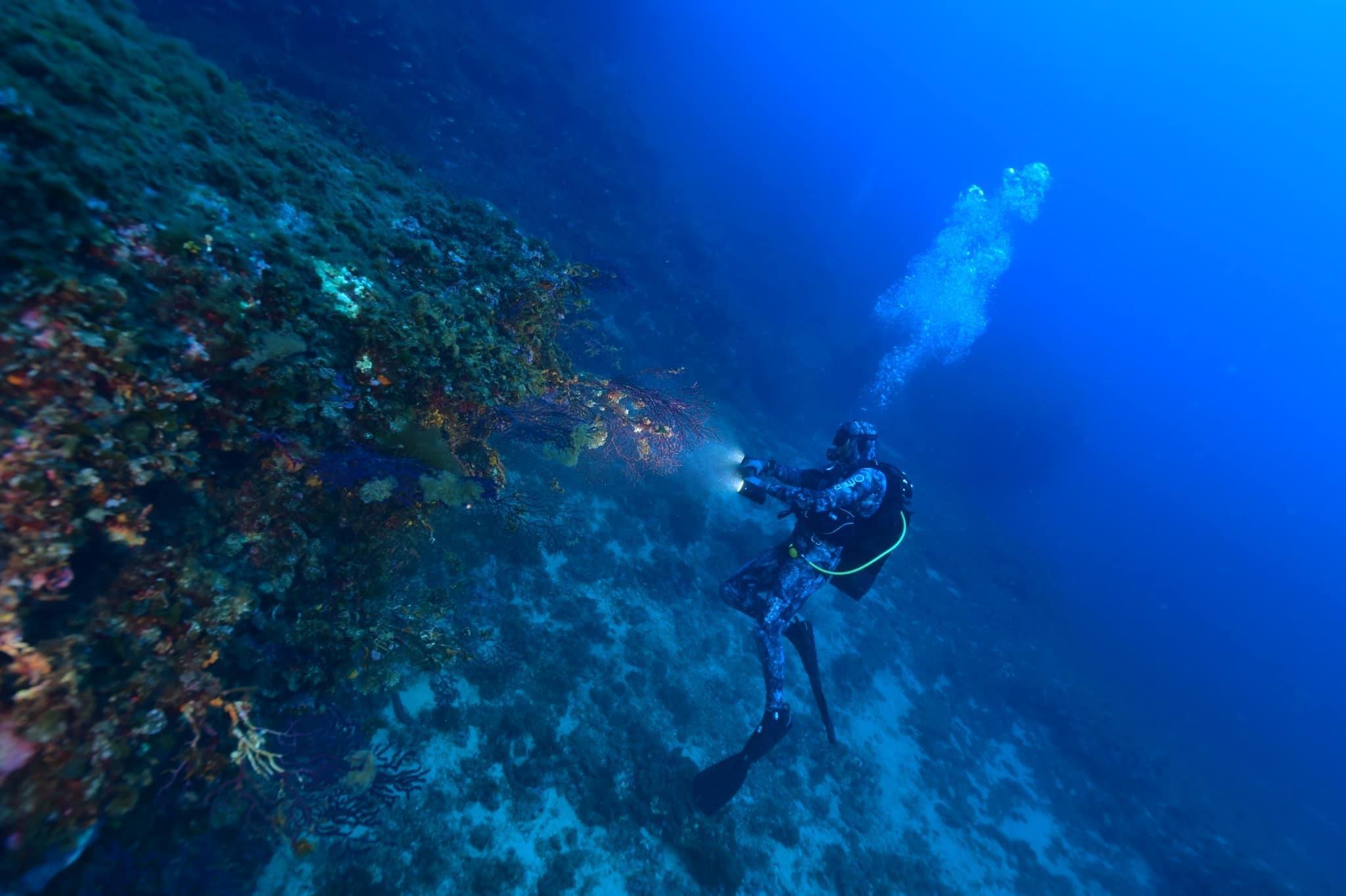 Tony Viacara 11ème au Championnat de France de photos sous-marines : «une superbe expérience»