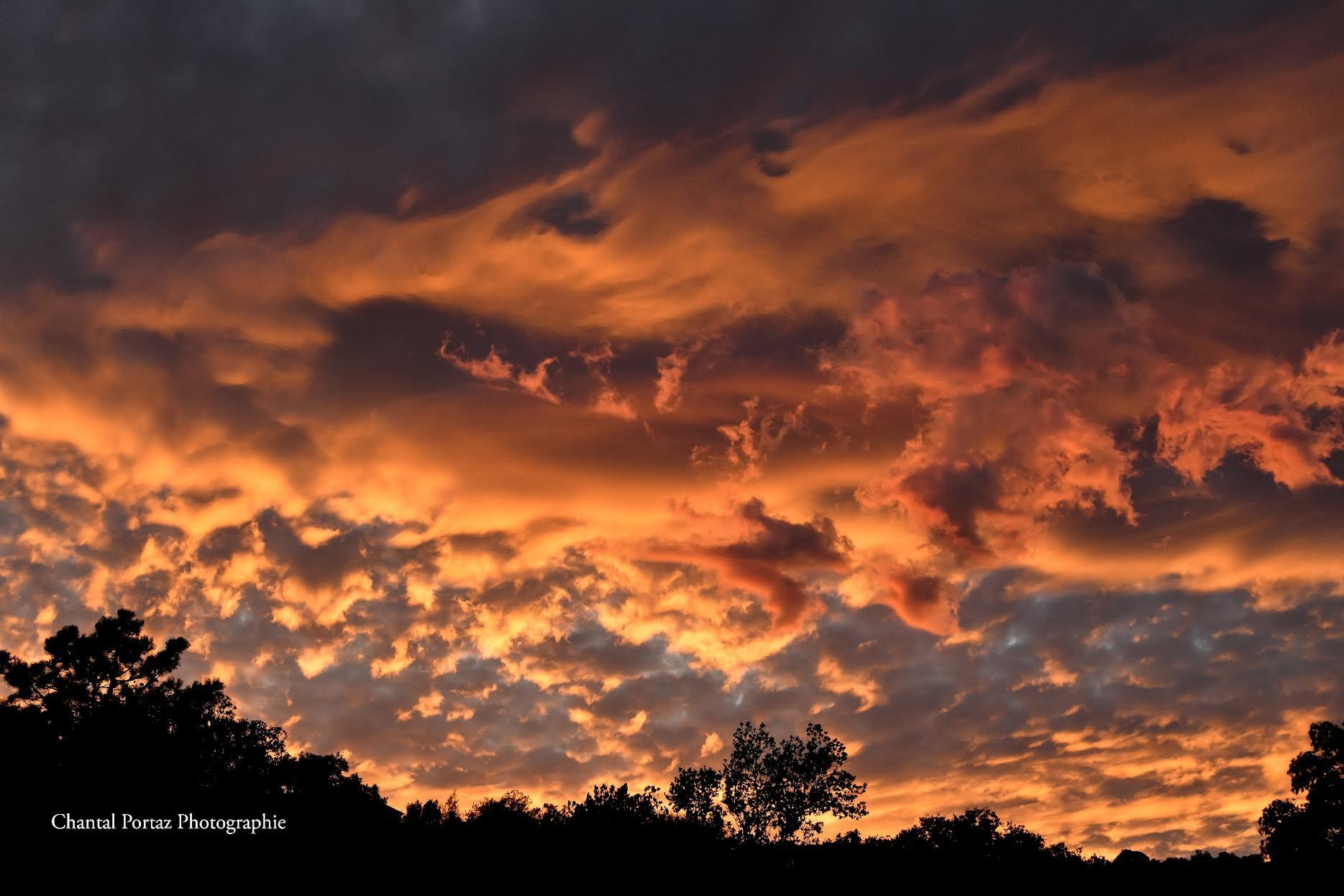 Le ciel de Porto-Vecchio (Chantal Portaz Biancarelli )
