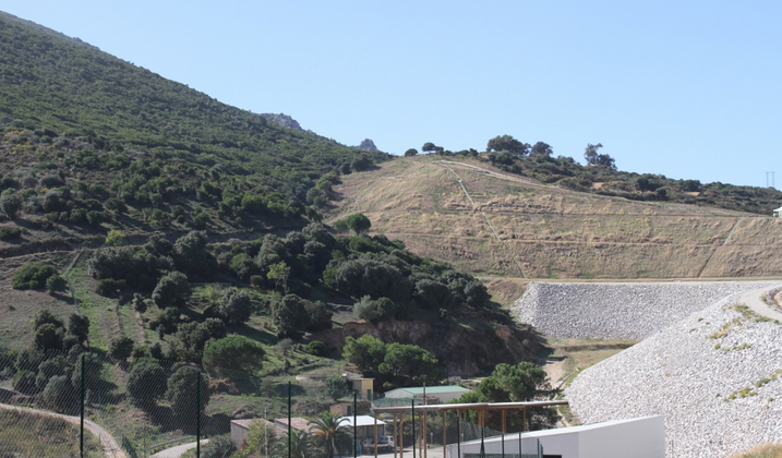 Ajaccio : Dégradations et vol d'un olivier sur le site de l'ancienne décharge de Saint Antoine