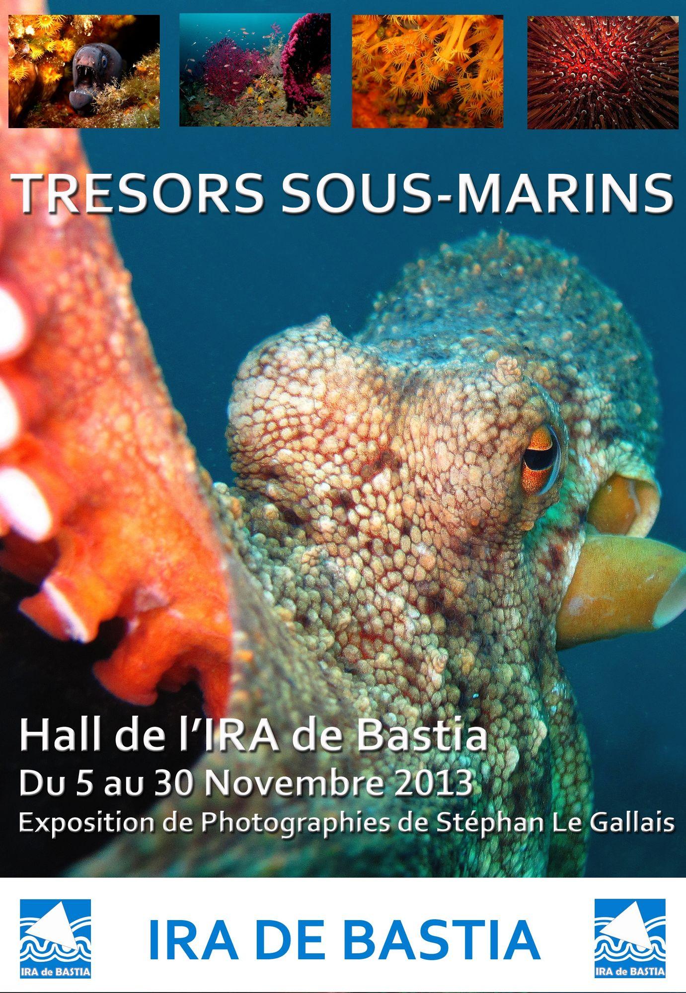 Bastia : Les trésors sous-marins de Stéphan Le Gallais à l'IRA