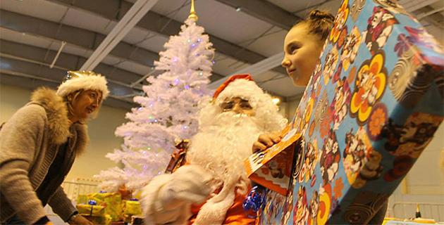 L'arbre de Noël à la Communauté de Communes de Calvi-Balagne
