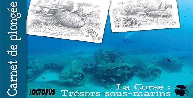 Carnet de plongée : La Corse, trésors sous-marins