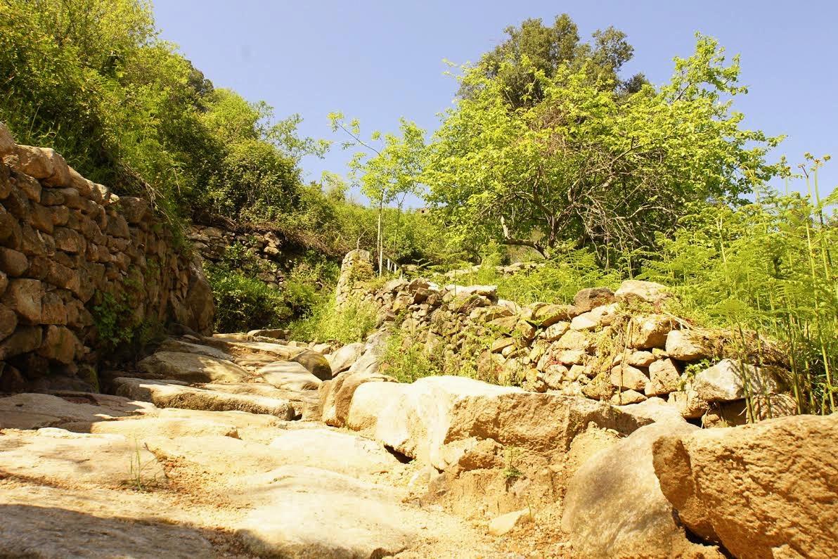Sentier du Patrimoine de Cutuli e Curtichjatu : A Stretta di i Mulini au cœur du village