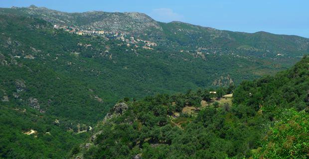 Communes rurales du Haut Nebbiu en Haute-Corse.
