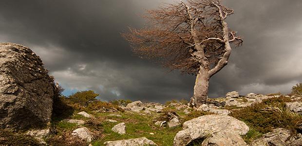 Alerte au coup de vent sur la Corse Jeudi