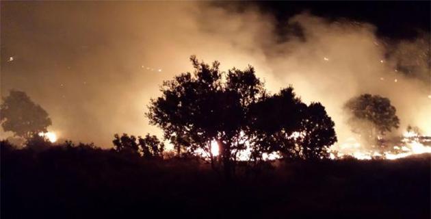 Le feu qui a parcouru 3 hectares est toujours en cours
