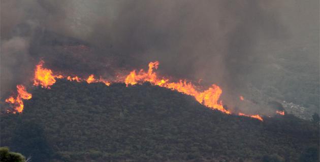 Feu de Calenzana : Origine volontaire et mises à feu multiples