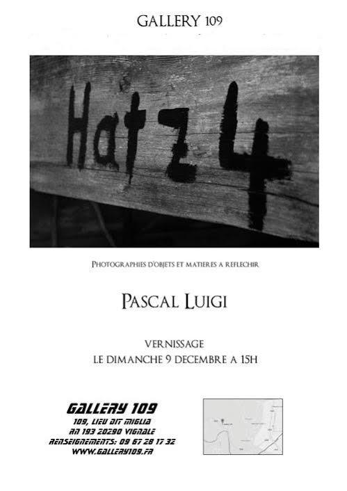 Pascal Luigi à la Gallery 109