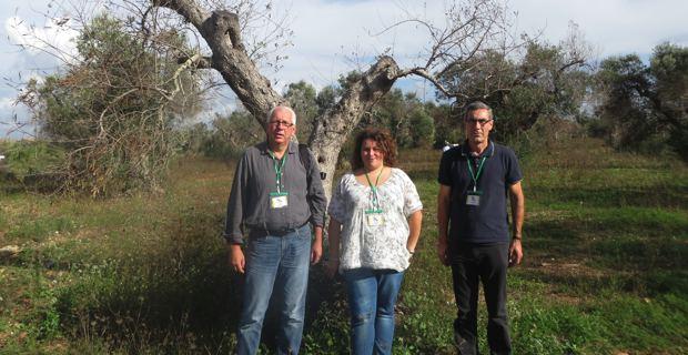La délégation insulaire envoyée par l'ODARC au symposium de Gallipoli : Saveriu Luciani, conseiller territorial Femu a Corsica, Barbara Carayol, animatrice du syndicat Oliu di Corsica et Daniel Sainte-Beuve, responsable des filières végétales auprès de l'ODARC.
