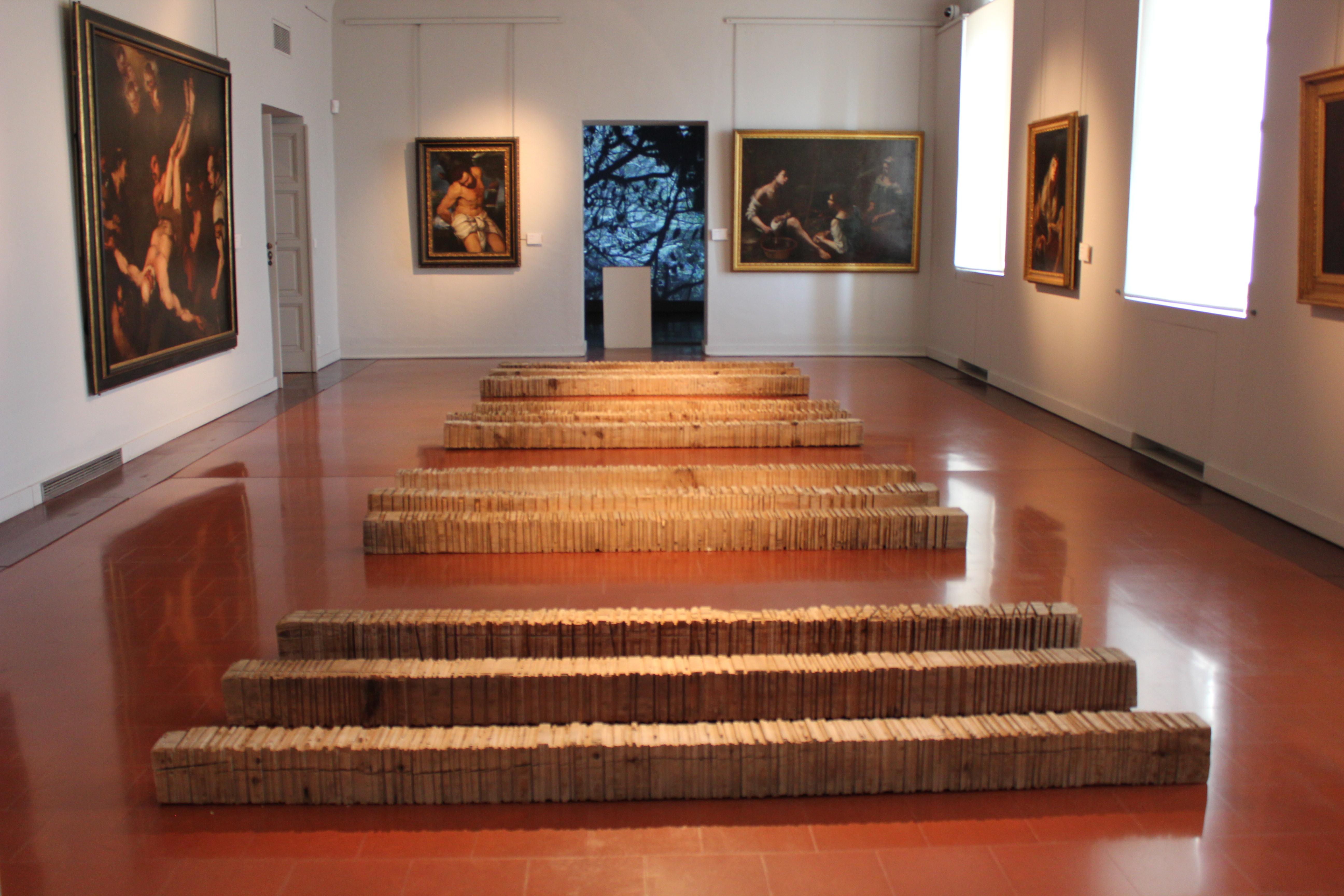 Ajaccio : La nature s'expose dans sa violence au musée Fesch