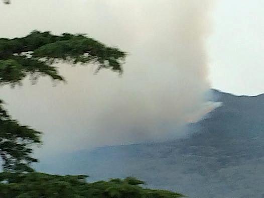 Furiani : 25 hectares détruits par un violent incendie