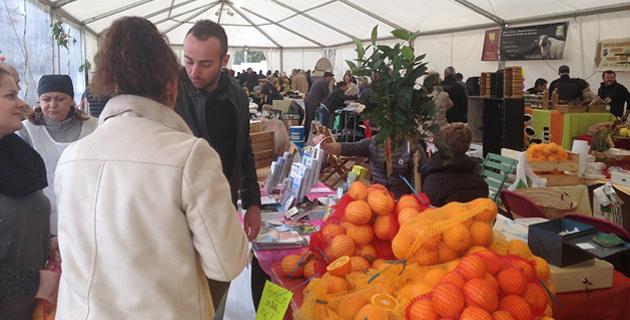 Bastelicaccia : Les agrumes en fête depuis 10 ans