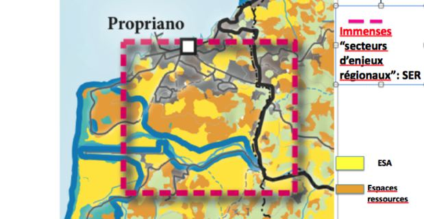 Carte des espaces remarquables et caractéristiques de Punta Capineru à Pianuttoli Caldarellu.