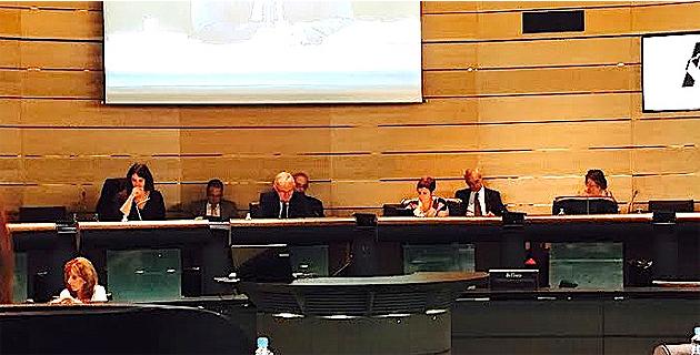 Conseil départemental 2 B : Condamnation, rapprochement, amnistie, soutien