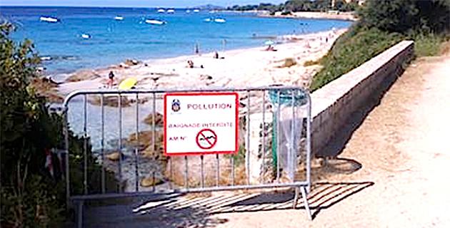 Ajaccio : Interdiction de baignade à La Parata