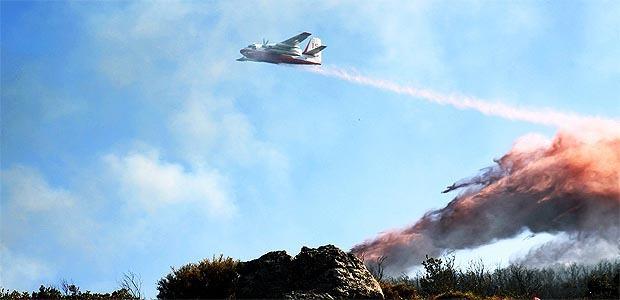 Sainte Lucie de Porto-Vecchio : Un incendie détruit 3 hectares de maquis