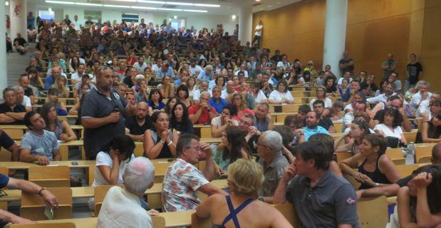 Xylella Fastidiosa : L'appel à la mobilsation des Corses