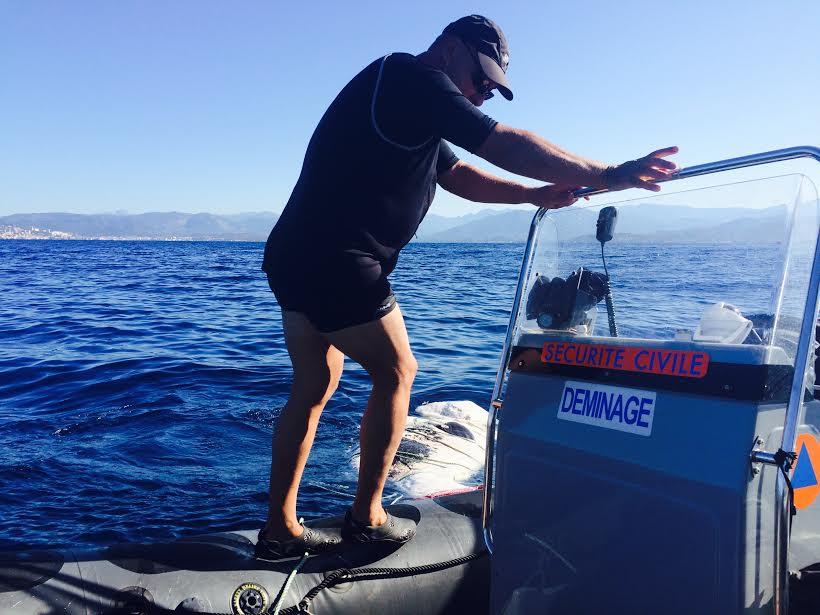 Pietrosella : Le baleineau a été coulé, le principe d'interdiction de baignade demeure
