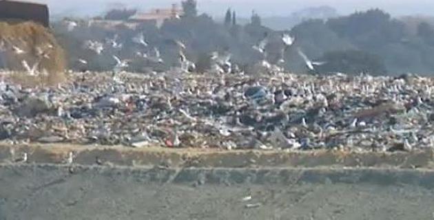 Après Vico, Prunell-di-Fium'Orbu bloqué à son tour : Gardez vos déchets