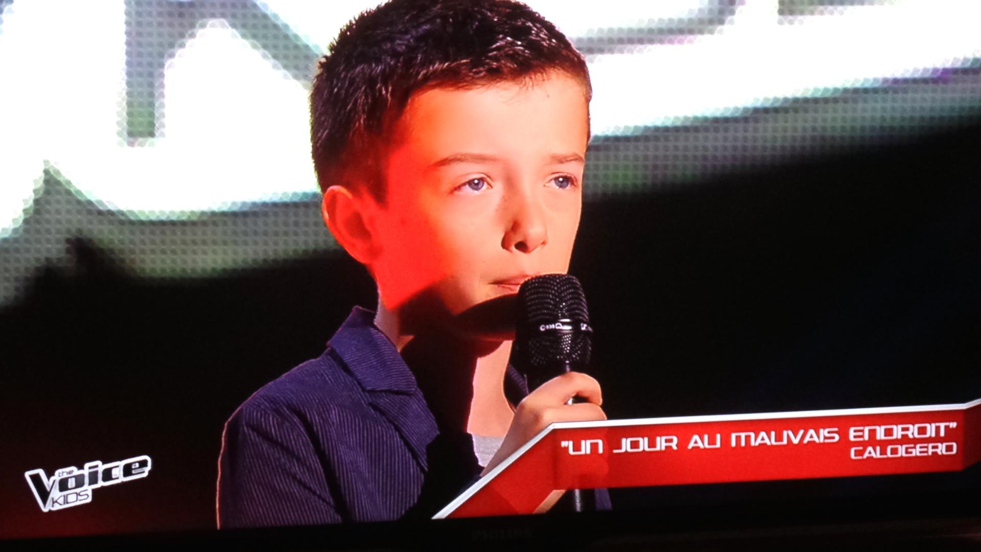(Capture d'écran TF1)