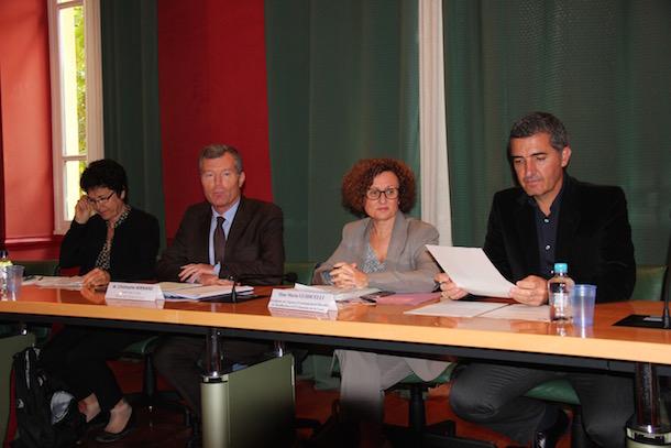 L'Assemblée de Corse va se prononcer sur la programmation pluriannuelle de l'énergie