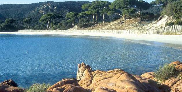 TripAdvisor et les plus belles plages : Palombaggia, 1ère plage de France, est 25ème du classement Europe