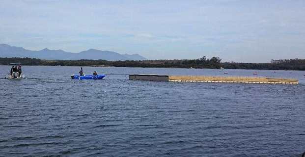 Etang d'Urbinu : Le plus grand radeau d'Europe pour la nidification des oiseaux marins protégés