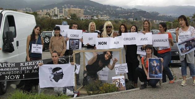 Le GEK Corse, comme ici à Bastia, milite contre la présence d'animaux sauvages dans les cirques