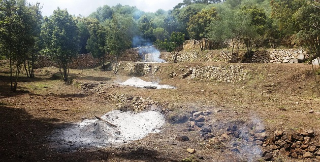 Le cimetière des enfants du bagne de Castelluccio aujourd'hui à ciel ouvert