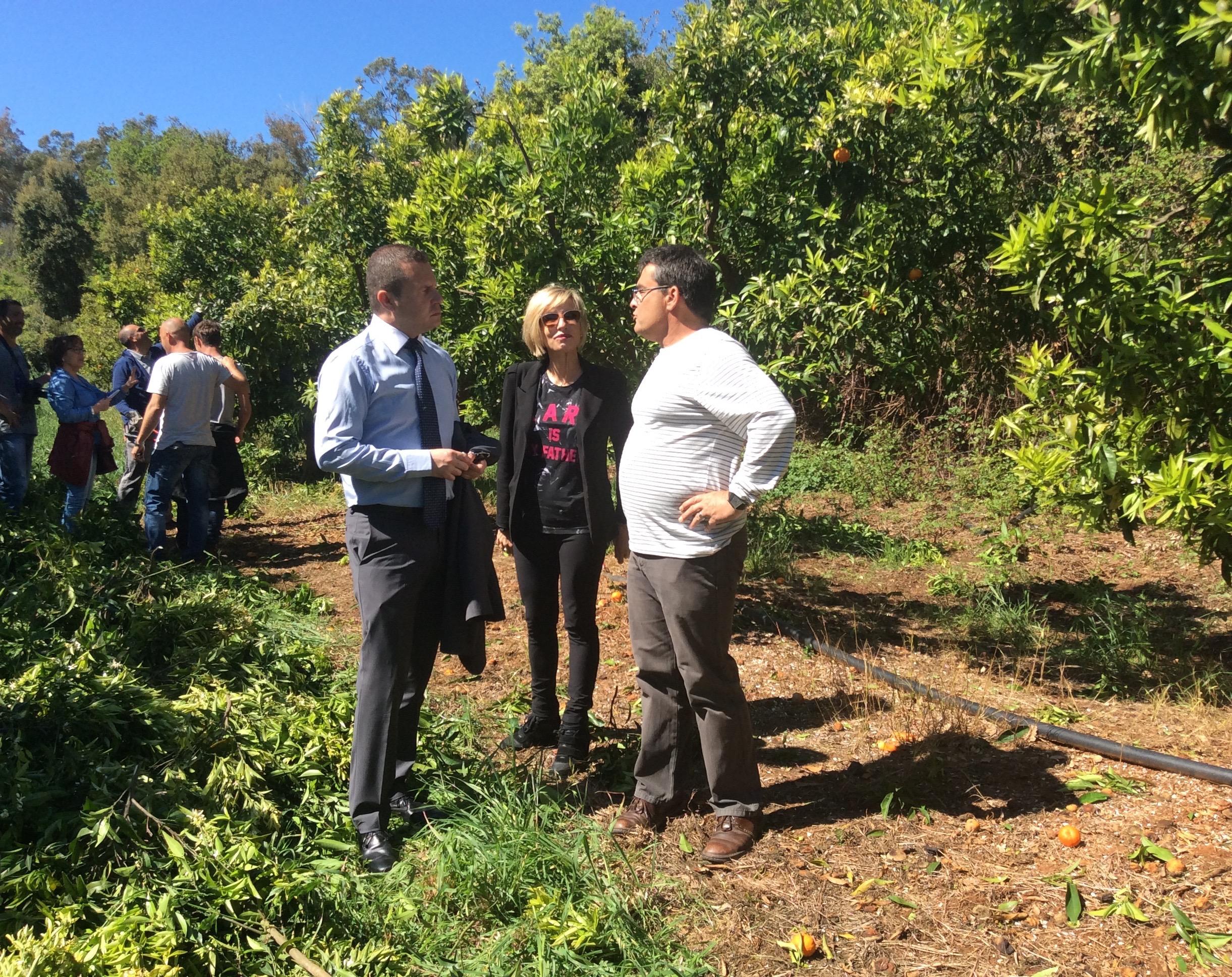 San giuliano visite du sous pr fet de corte sur le site for Chambre d agriculture haute corse