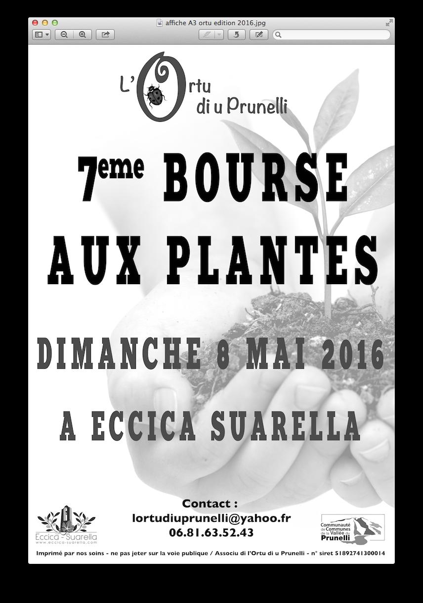 Eccica-Suarella : 7ème Bourse aux Plantes le 8 mai