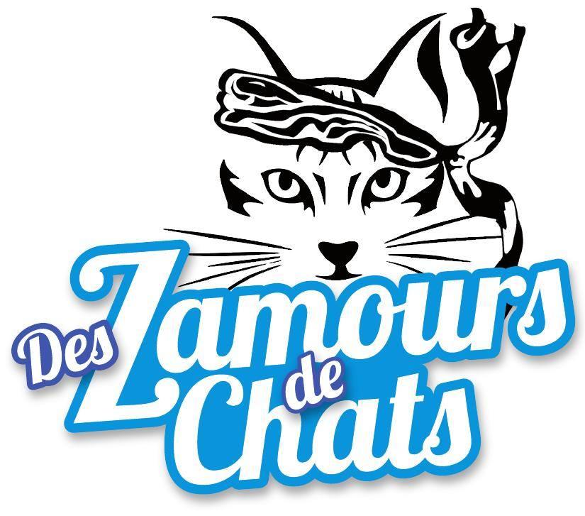 Ajaccio Des z'amours de chats