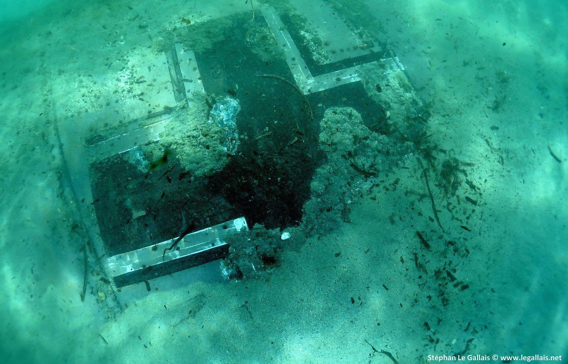 Bastia : La Croix de la Luftwaffe intacte sur l'aile du Junkers 90