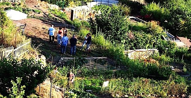 Inauguration des jardins collectifs de Lumio