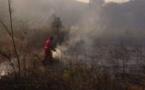 Conca d'Oru : Plus de 520 hectares dévastés, d'importants moyens mobilisés, l'inquiétude demeure…