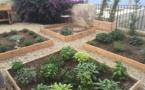 La Ville de Bastia inaugure son premier jardin participatif à la Citadelle