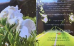 """400 CD """"A nos Anges de la route"""" offerts à l'association """"Adrien Lippini - Un vélo, Une  Vie"""""""