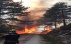 Corse du Sud : Des incendies loin d'être maîtrisés, Palneca sous haute surveillance