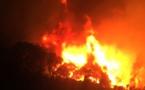 Incendie : Feu de maquis en pleine nuit à Lumio