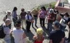 Bastia : A la découverte des plantes marines …