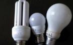 Collecte et recyclage des lampes à économie d'énergie : Une belle progression de la Corse