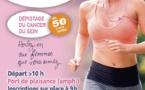 La Marche Rose de la Ligue contre le cancer aura lieu le 7 octobre à Calvi