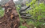Adrian : Toujours 21 000 foyers sans électricité en Corse