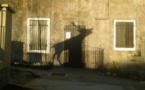 Quenza : Le brame du cerf au Soleil couchant